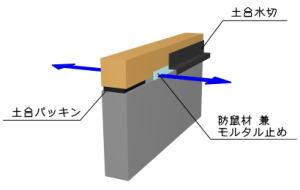 basis-2
